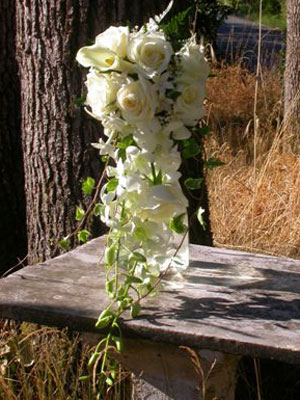 Traditional Cascade Wedding Bouquet of callas, roses, dendrobium orchids, stephanotis, ivy