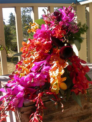 Traditional Cascade Wedding Bouquet of assorted mokara, aranda and dendrobium orchids