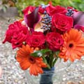 Posy Style Wedding Bouquet of dwarf callas, viburnum, roses, gerberas