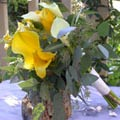Posy Style Wedding Bouquet of assorted dwarf callas and seeded eucalyptus