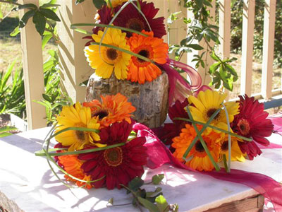 Posy Style Wedding Bouquet of assorted gerberas, beargrass